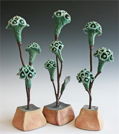 """Suzanne Kane """"Desert Weeds"""""""