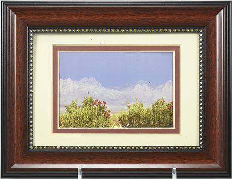 Framed Organ Mountain Photograph