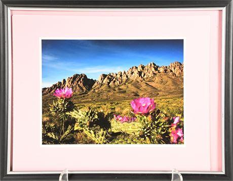 Framed Organ Mountain Photo