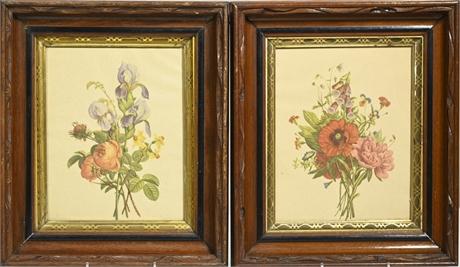 Pair Antique Frames with Botanical Prints