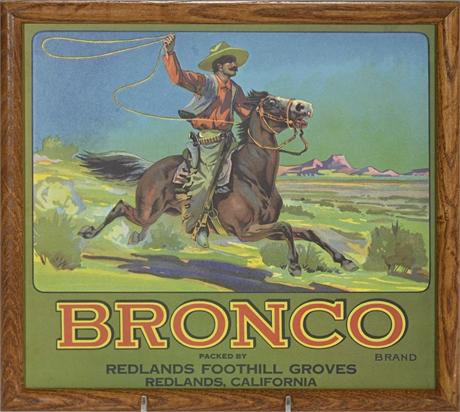 Vintage Bronco Fruit Label Framed