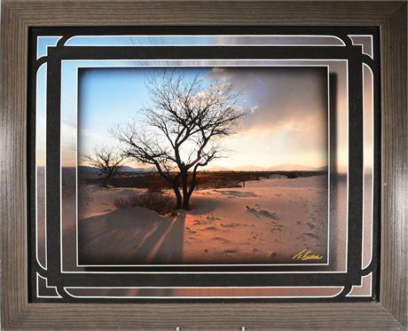 On the Edge of White Sands Framed Photograph