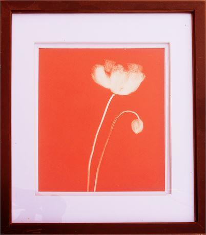 Poppy on Orange by Nolan Winkler