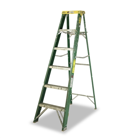 6' Fiberglass Davidson Ladder